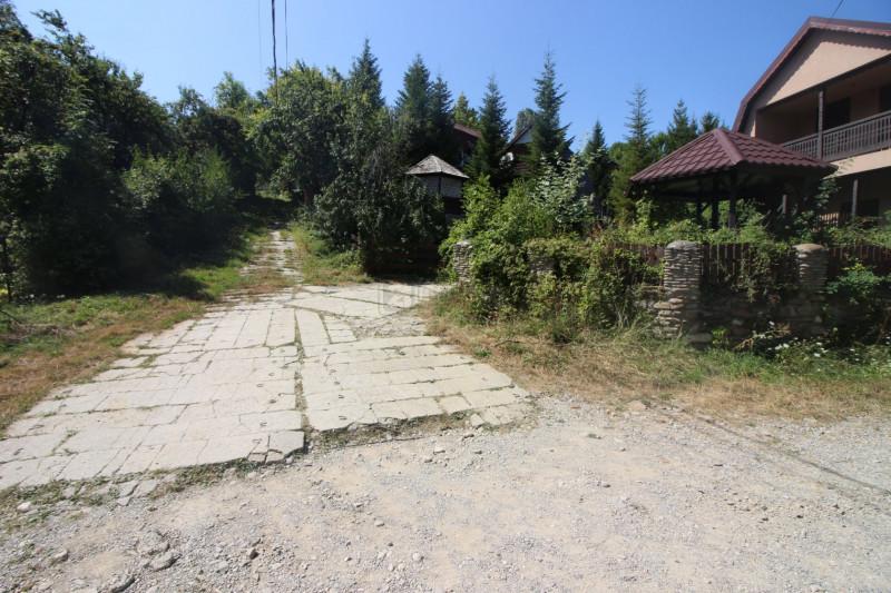 Campina/Sos.Paltinu, teren 1839 mp, locatie de vis, priveliste superba